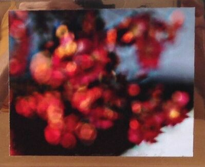 Tuba Köymen, 'Untitled (Floral)', 2012