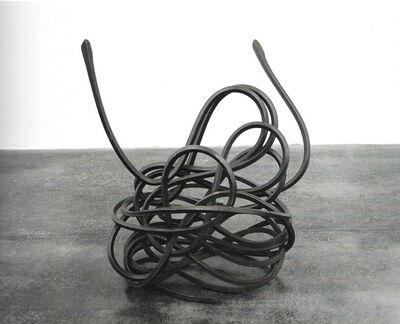 Markus F. Strieder, 'ligne syam', 2008