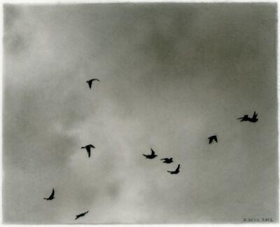 Dozier Bell, 'Flock, 6', 2012