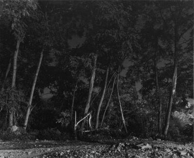 Gilbert Fastenaekens, 'Milan (89-1474)', 1980-1987