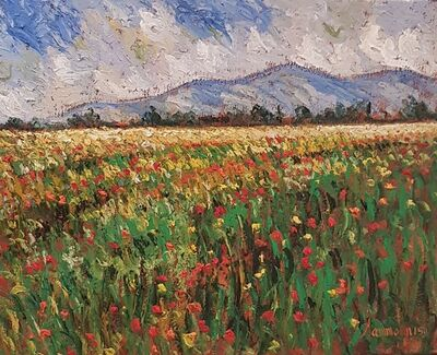 Samir Sammoun, 'field-of-poppies-in-the-provence', 2017