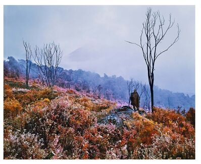Richard Mosse, 'Nineteenth Century Man', 2011
