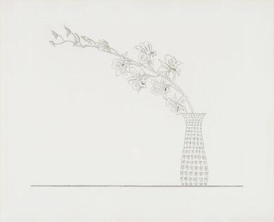 Ed Baynard, 'Untitled, from the Flowers Portfolio', 1979