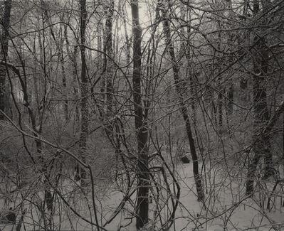 Linda Connor, 'Ice Storm, Connecticut', 1977
