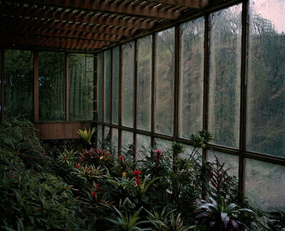 Jason Frank Rothenberg, 'Hawaii (Interior #1), Edition of 8', 2016