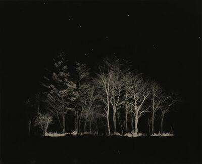 Yamamoto Masao, 'Untitled #1632', 2014