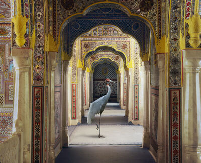 """Karen Knorr, 'The Holding of Vigilance, Samode Palace.From the series """"India Song""""'"""