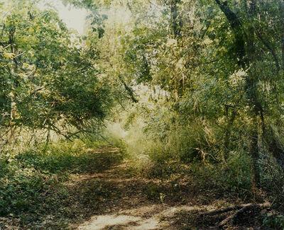 Bryan Graf, 'Mirrored Path (Quickly Panning)', 2016