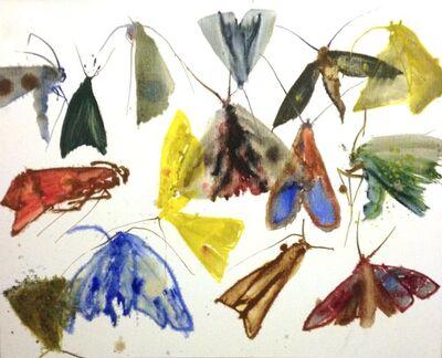Allyson Reynolds, 'Untitled VI (Moths)', 2011