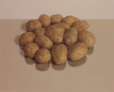 Comhghall Casey, 'Sixteen Potatoes', 2014