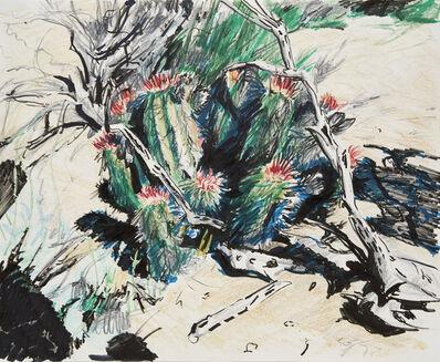 Eric LoPresti, 'Cacti, California', 2017