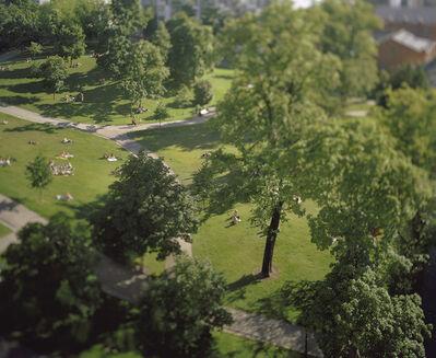 Miklos Gaál, 'Under the Linden tree', 2007