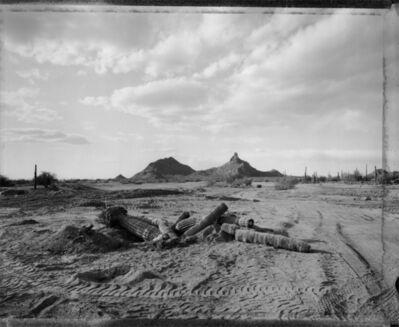 Mark Klett, 'Fallen cactus, new golf course, Pinnacle Peak, Arizona, 3/4/84', 1984