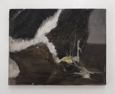 Pere Llobera, 'Gat', 2019
