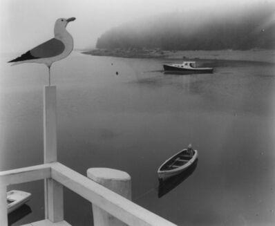 Ellen Auerbach, 'Seagull, Maine', 1941