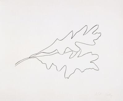 Ellsworth Kelly, 'Oak V', 1992