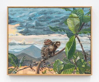 Alberto Baraya, 'Macaco con Caracol gigante africano (Callithrix jacchus con Achatina fulica) ', 2018