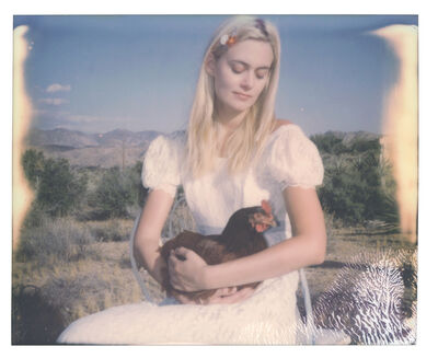 Stefanie Schneider, 'Chicken Madonna (Chicks and Chicks and sometimes Cocks)', 2018