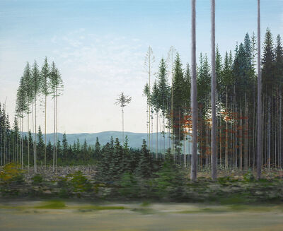 Fred Holcomb, 'Forestry', 2018