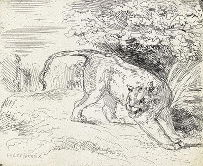 Eugène Delacroix, 'Tigre en Arrêt.', 1854