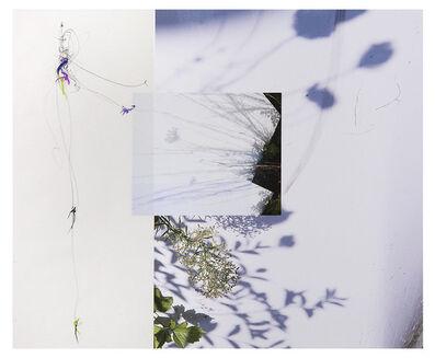 Sandi Haber Fifield, 'LS17_222', 2017