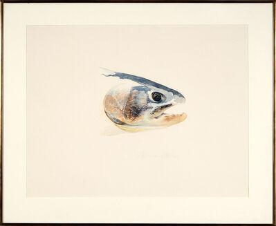 William Allan, 'MUir Creek - Spawning Steelhead', 1972