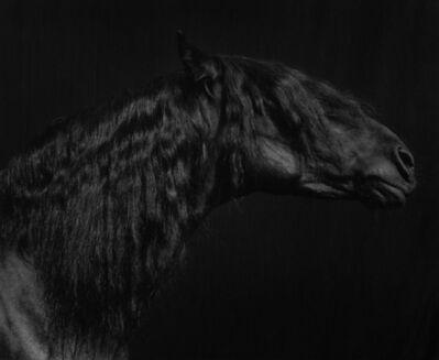 Sheila Rock, 'Horse #55', ca. 1999