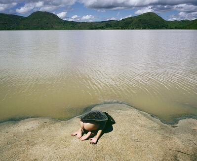 Scarlett Hooft  Graafland, 'Turtle', 2012-2013