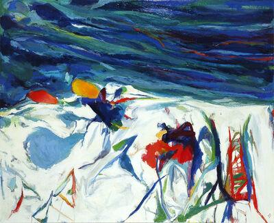 Robert S. Neuman, 'Winter Storm Schoodic', 2001