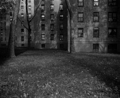 Yasutaka Kojima, 'New York', 2012