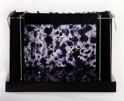 Jan Fabre, 'Das Glas im Kopf wird vom Glas, de danssectie III', 1987-1988