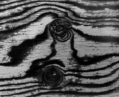 Brett Weston, 'Abstract Birch Bark', 1970-1980