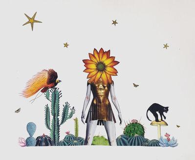 Simon Vargas, 'Cactaceae', 2019