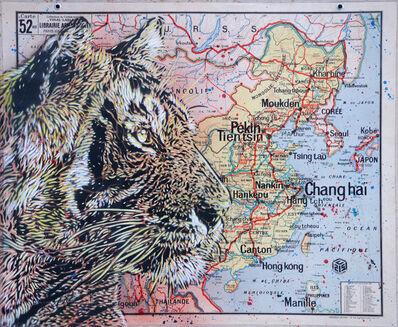 C215, 'Tiger - China', 2020