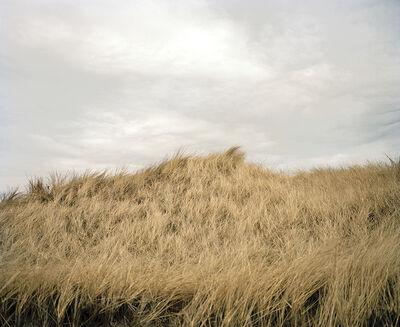 Maureen Drennan, 'Town Beach', 2010