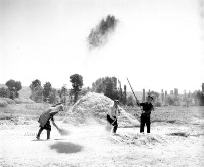 Neil Folberg, 'Winnowing wheat', 1971
