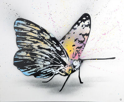 Nick Walker, 'Butterfly'