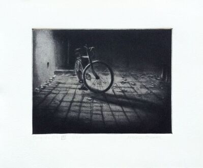 Jessica Dunne, 'Bicycle DE III', 2006