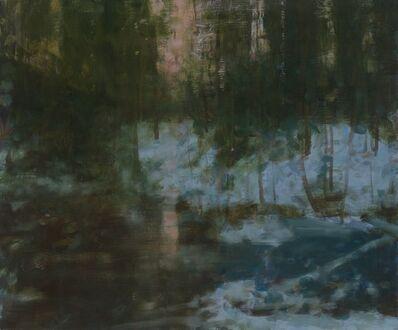 Dean Dass, 'Frozen Bog Etna Highlands ', 2019