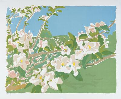 Fairfield Porter, 'Apple Blossoms III', 1974
