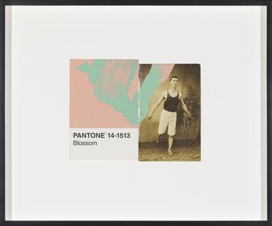 Tacita Dean, 'Pantone Pair (Peach Pearl)', 2019