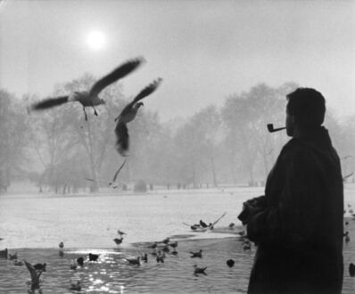 Wolfgang Suschitzky, 'St James's Park, January 2nd', 1932