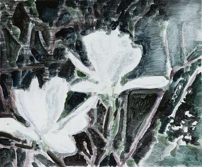 Kristina Alisauskaite, 'Magnolia', 2017
