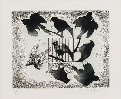 Evandro Carlos Jardins, 'ECM#5', 1970-1980