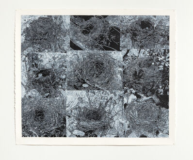 Helen Altman, 'Nine Nests', 2019