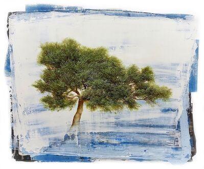 Jessica Pisano, 'Allure of Nature IV', 2019