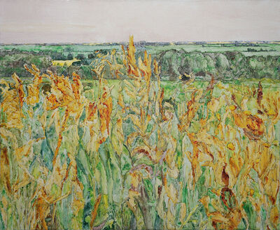 Dorothy Knowles, 'Brome Grass (AC-11-94)', 1994