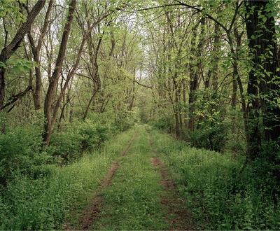 Jeff Brouws, 'Railroad Landscape #3, Poughkeepsie and Eastern Right-of-Way, (Abandoned 1938), MP 92, View South, Sprint, McIntyre, New York', 2009