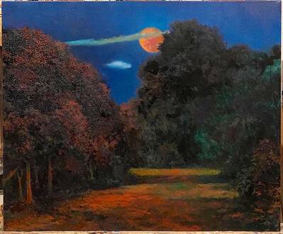 Douglas James Maguire, 'Somewhere in Woodstock', 2021