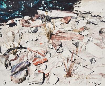 Eric LoPresti, 'Red rocks, Joshua Tree', 2017